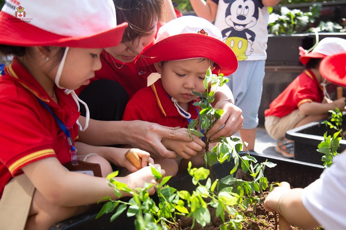 Education at the early years of children's lives is a solid foundation for their development.